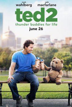 Ayı Teddy 2 izle