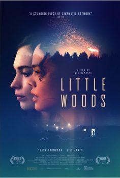 Little Woods izle