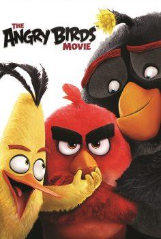 Angry Birds izle