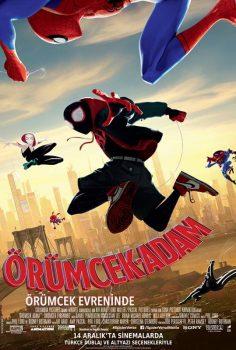 Örümcek-Adam: Örümcek Evreninde izle